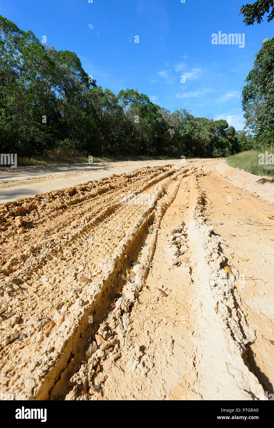 muddy and rutted dirt road to chilli beach cape york peninsula far