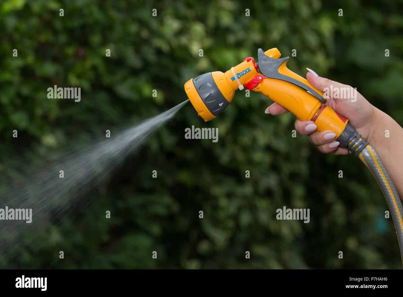 A uses a hose pipe in Nottinghamshire before a possible hosepipe ban takeseffect in the UK. - Stock Image