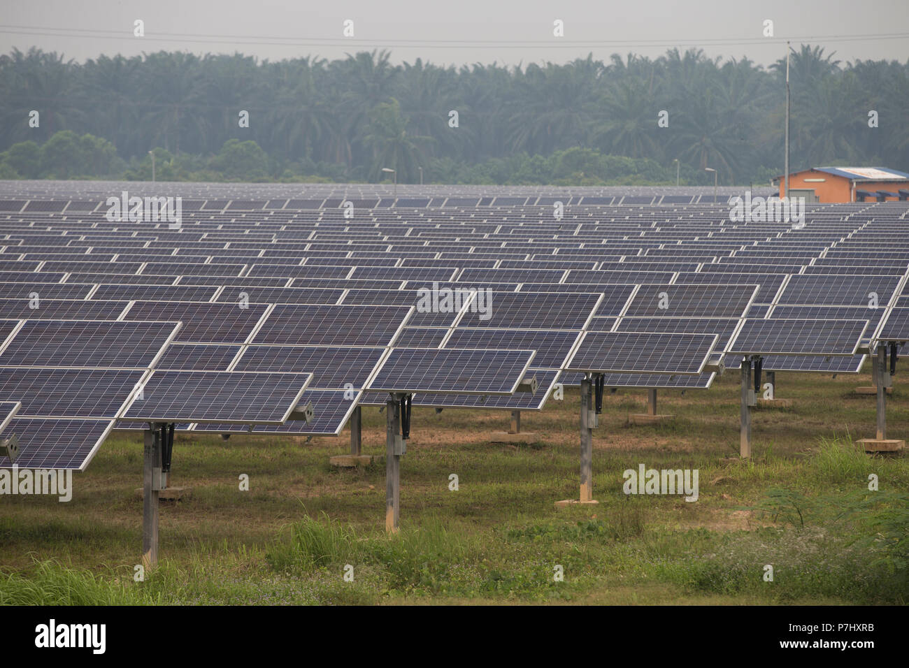 A field of solar panels south of Kuala Lumpur, Malaysia, The panels are used to power the nearby Kuala Lumpur International Airport. - Stock Image
