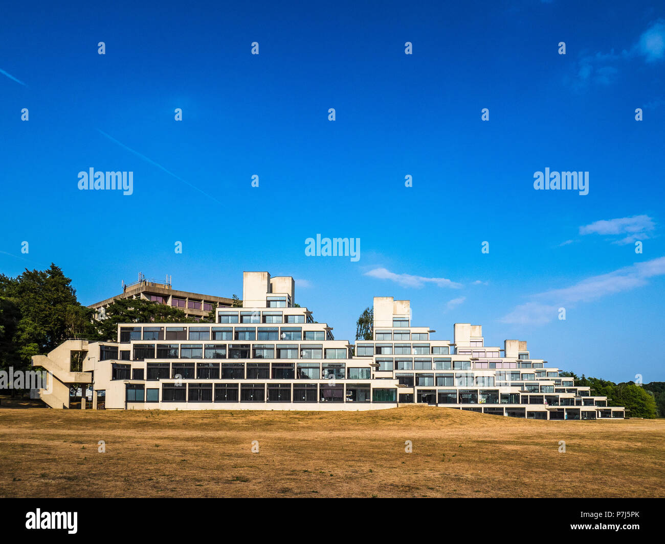 Ziggurats at the University of East Anglia UEA in Norwich UK - the ziggurats provide student accommodation. Architect Denys Lasdun opened 1966 - Stock Image
