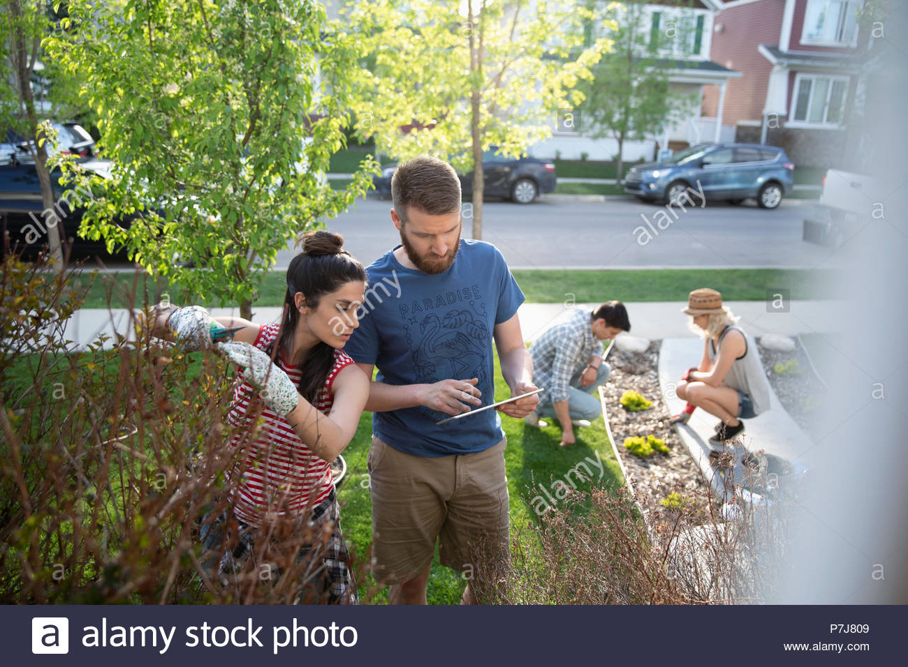 Couples with digital tablet gardening, doing yard work in front yard - Stock Image