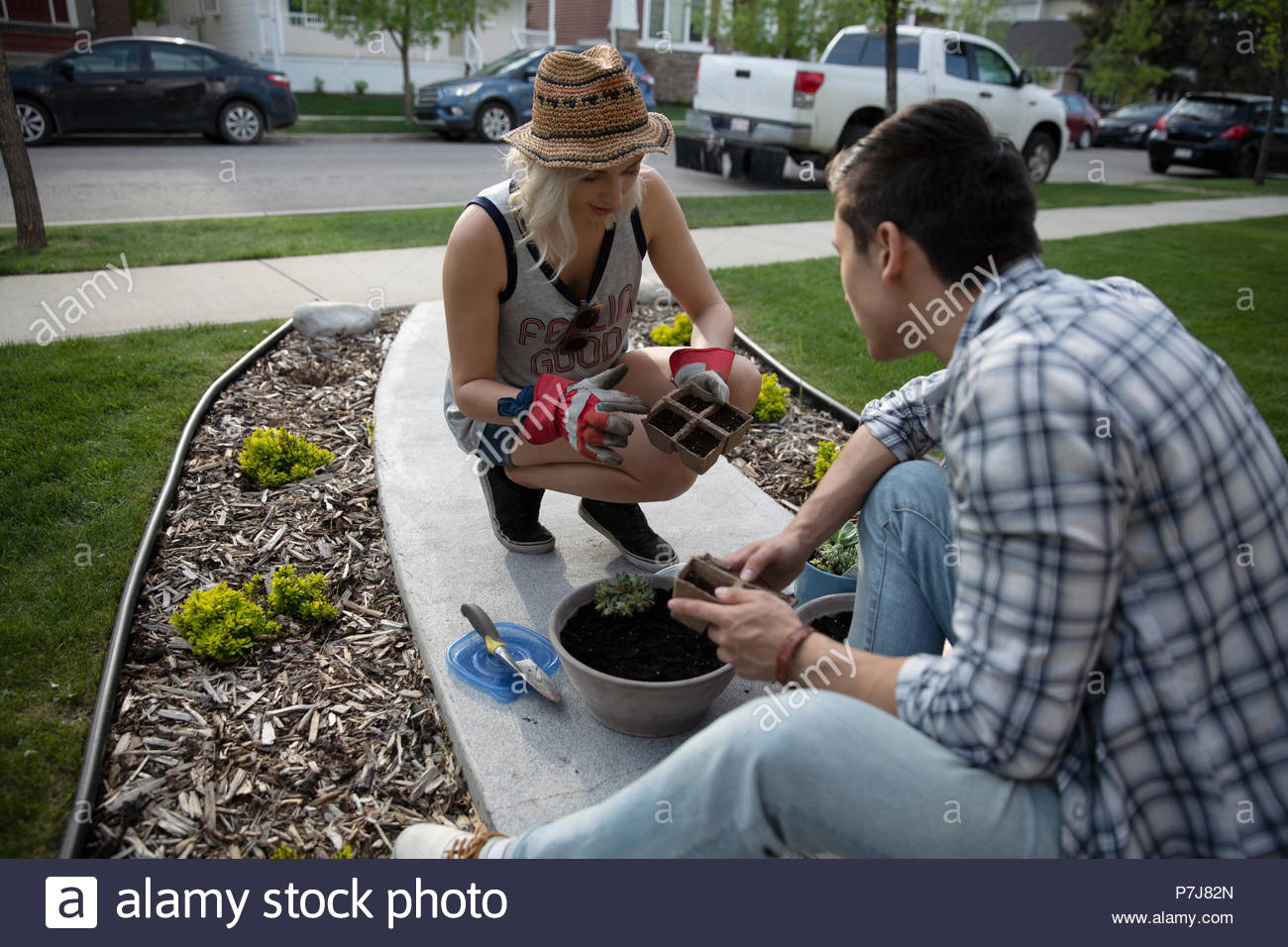 Young couple planting flowers in front yard Stock Photo