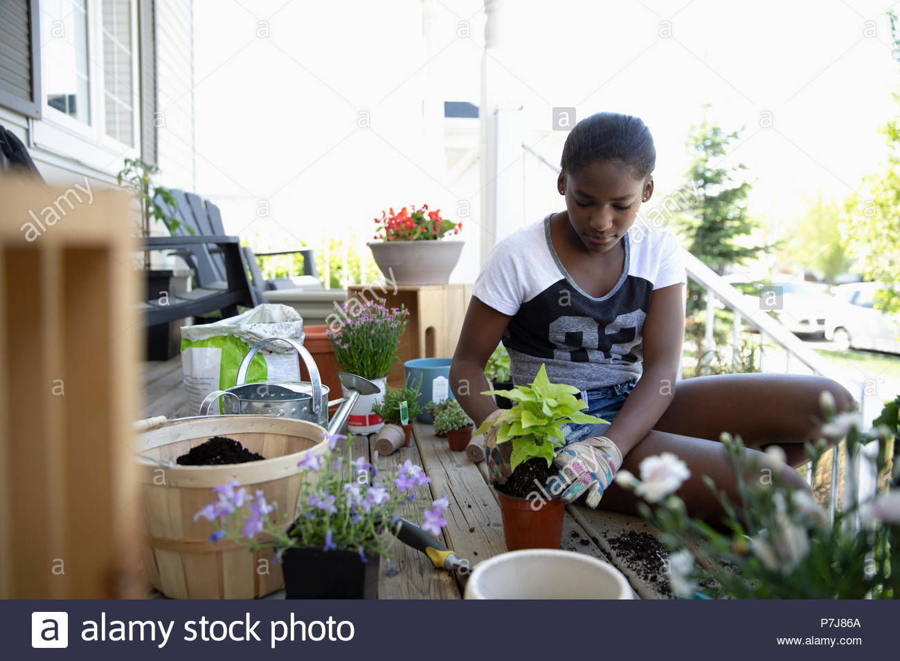 Tween girl potting plants on front stoop - Stock Image