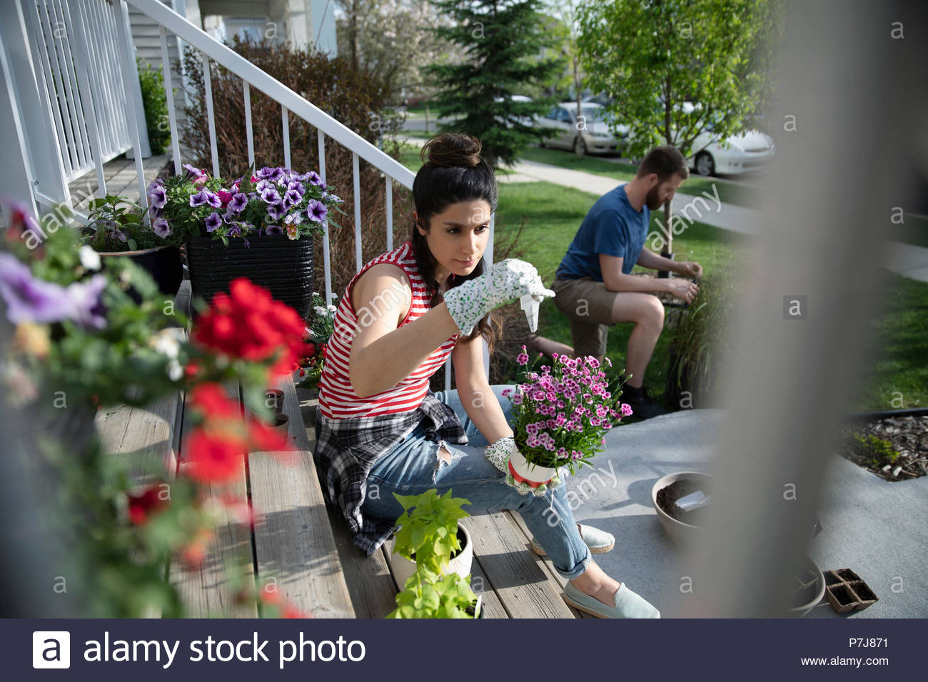Couple gardening, planting flowers on sunny front stoop - Stock Image