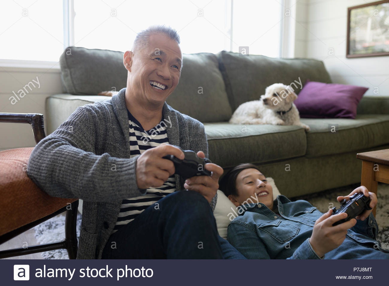 Dog watching happy father and son playing video game in living room - Stock Image