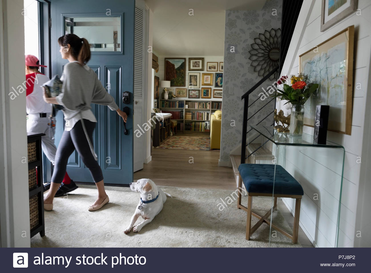 Dog watching mother and son leaving for baseball practice at front door - Stock Image