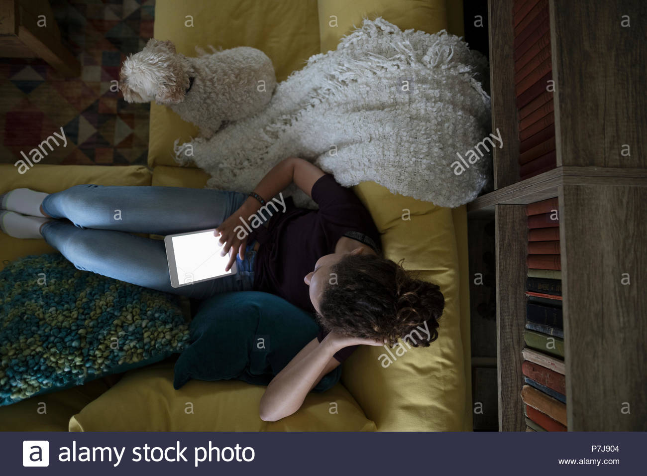 Overhead view tween girl with dog using digital tablet on sofa - Stock Image