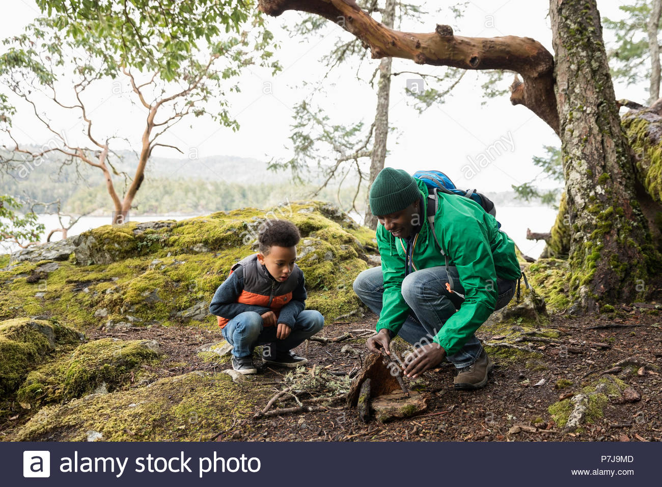 Father and son building campfire in woods - Stock Image