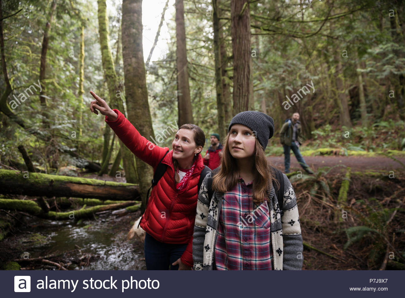 Mother and daughter hiking, exploring in woods Stock Photo