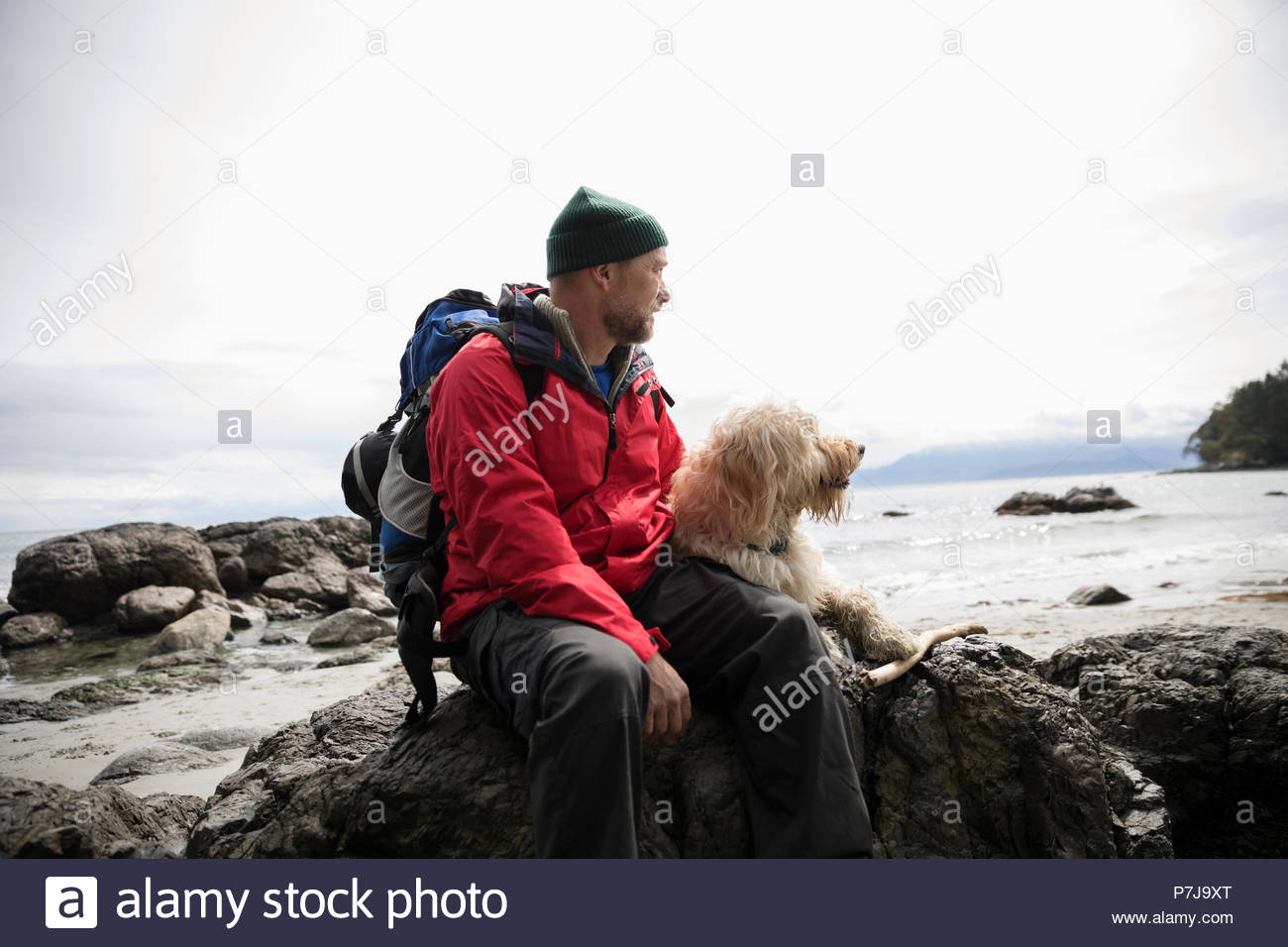 Man with dog sitting on rocks on rugged beach - Stock Image