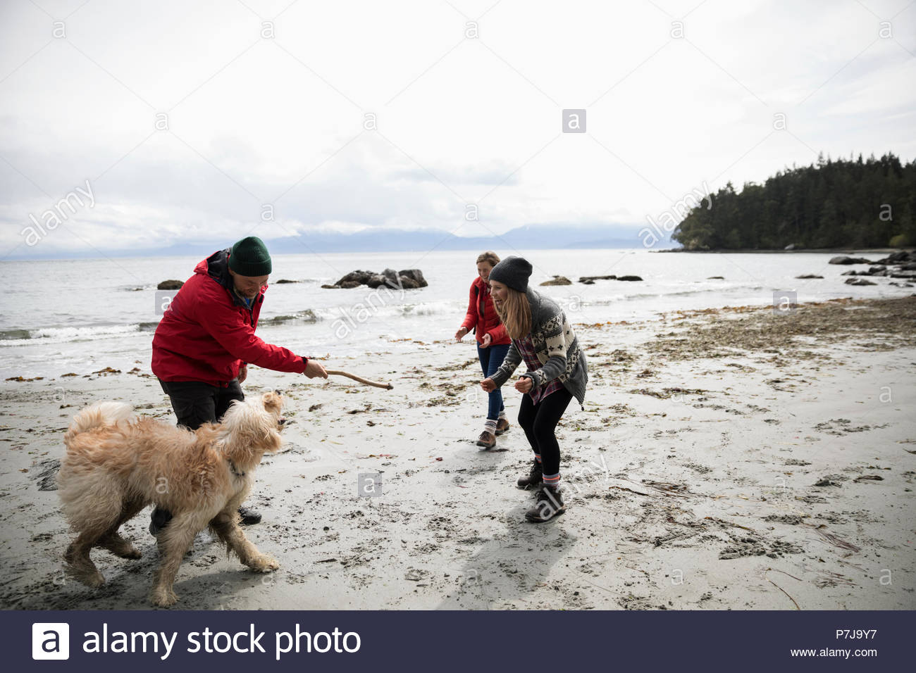 Family with dog playing on rugged beach - Stock Image