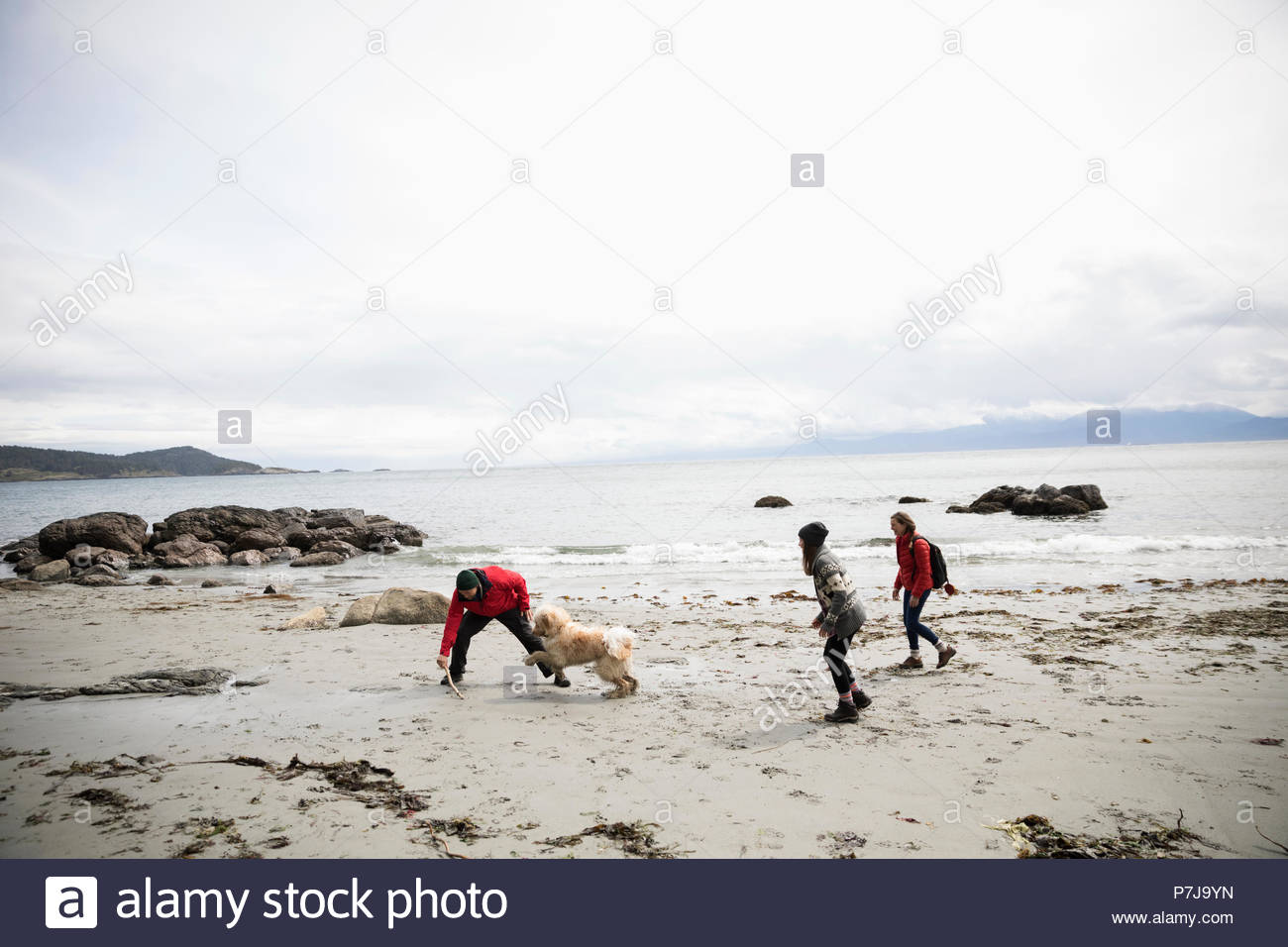 Family with dog playing on rugged beach Stock Photo