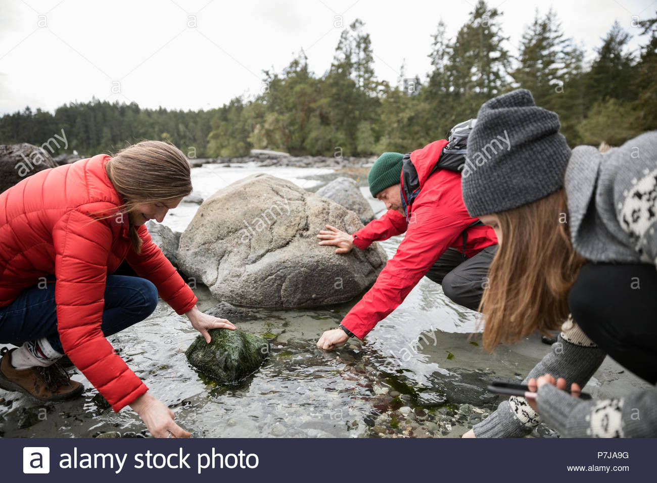 Family exploring in tidal pool on beach - Stock Image