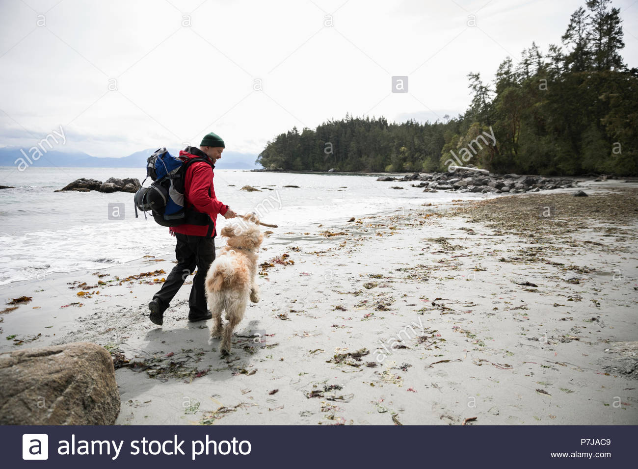 Man with dog backpacking on rugged beach - Stock Image