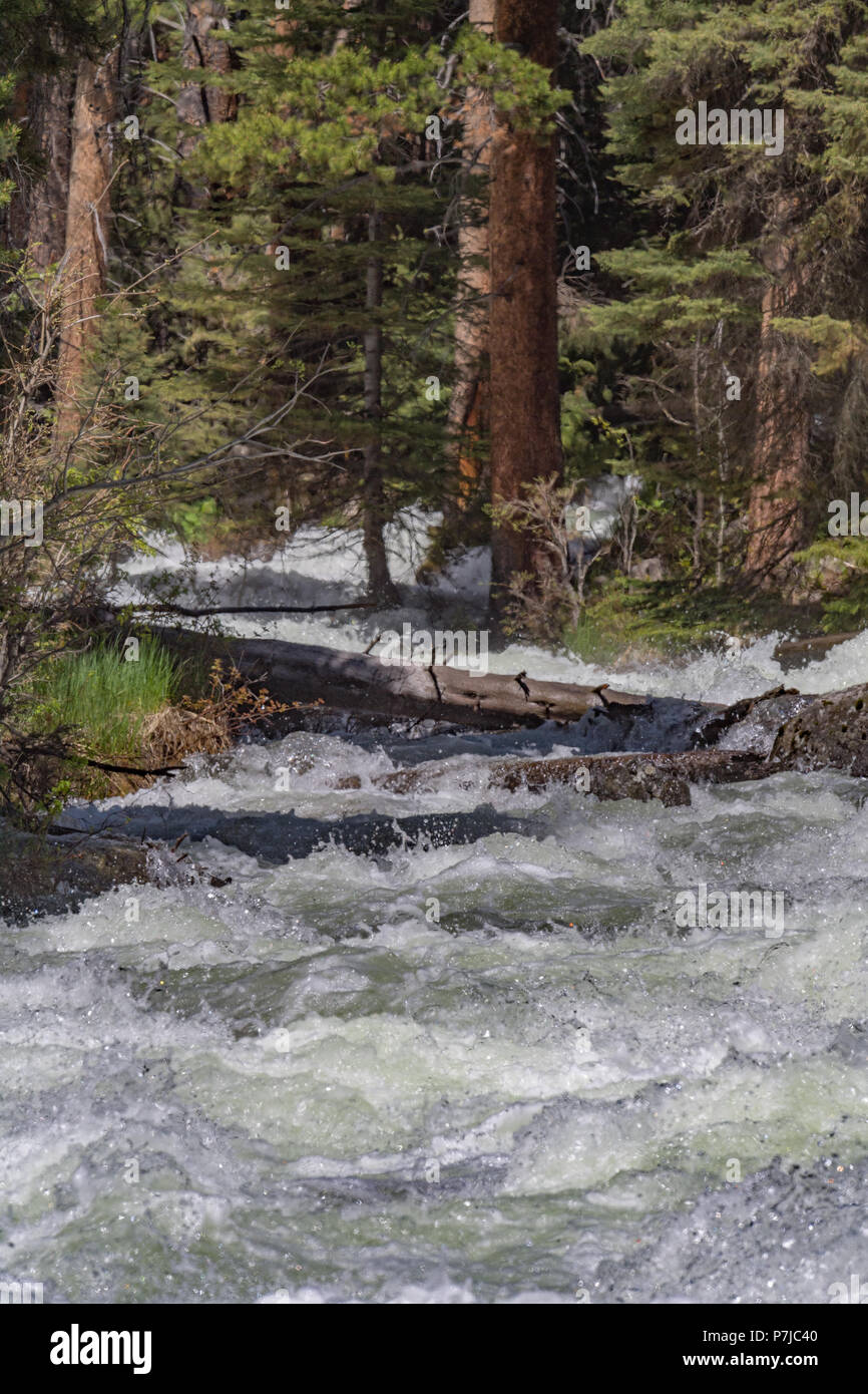 Spring - Melting snow and ice fast flowing down mountain - Stock Image