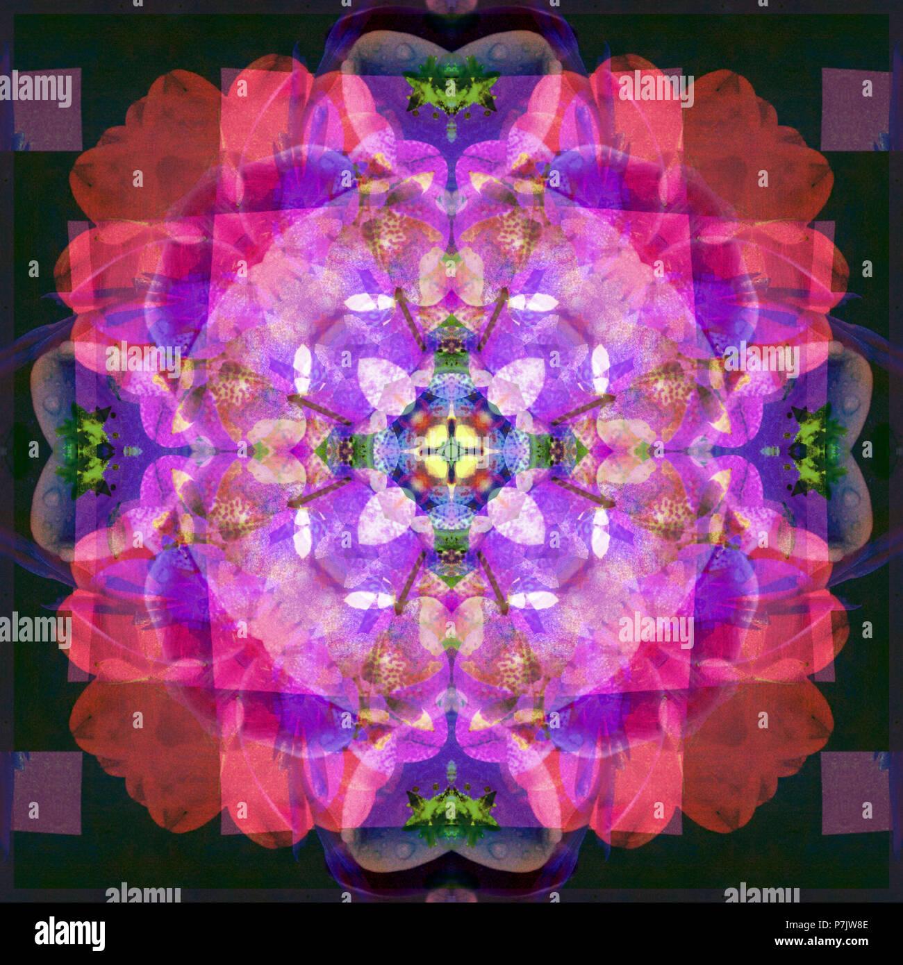 Photographic flower mandala, purple, pink, dark green, Stock Photo