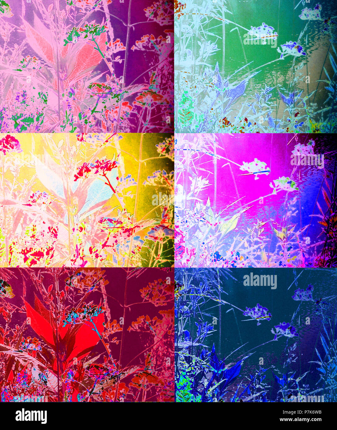 Collage of multi-layered photographs of branches, colored - Stock Image