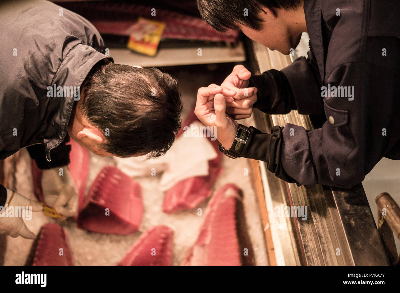 Two people bend over an drop-in freezer filled with fresh fish - Stock Image