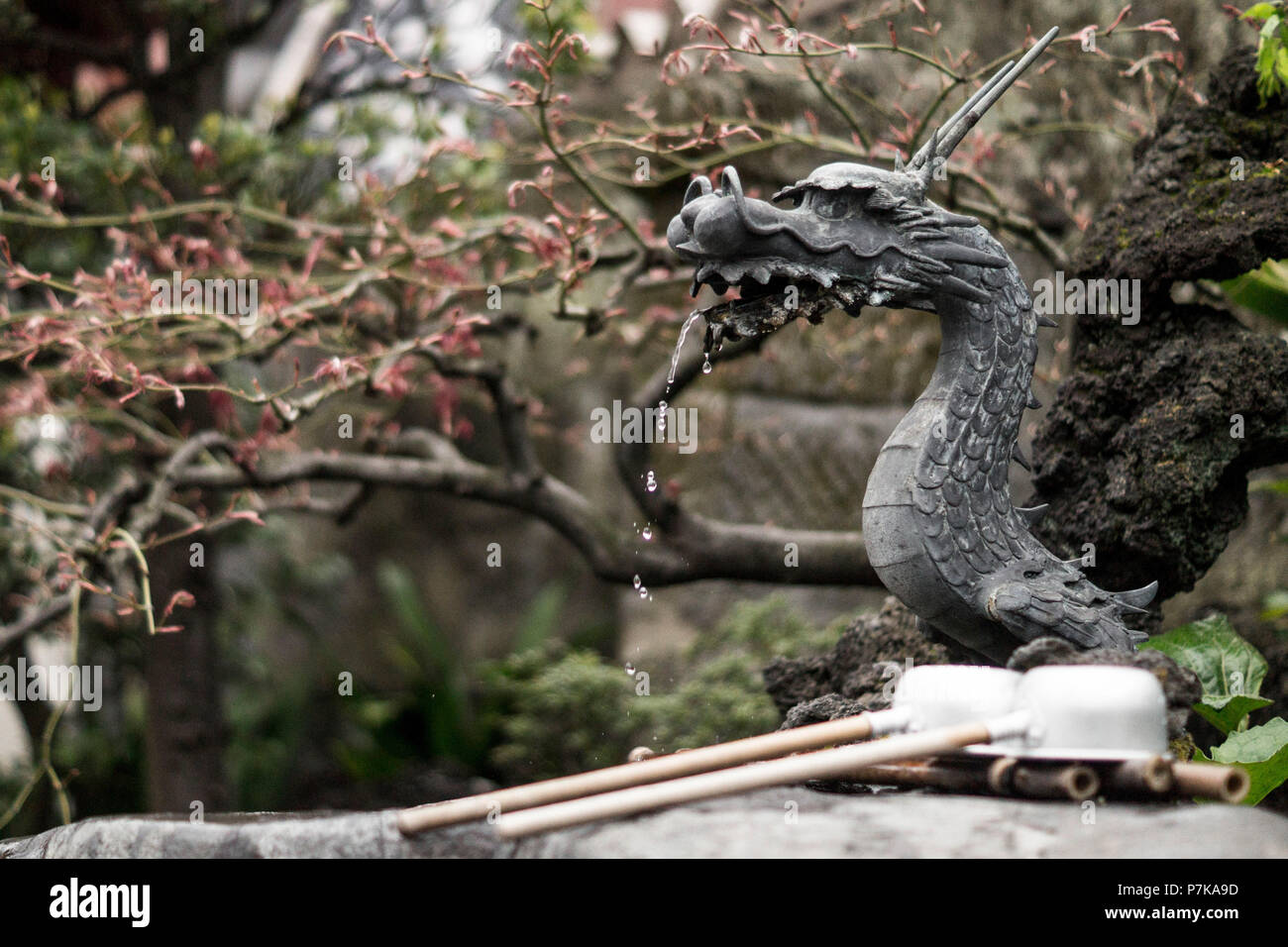 A small fountain in the form of a dragon in a Japanese garden - Stock Image