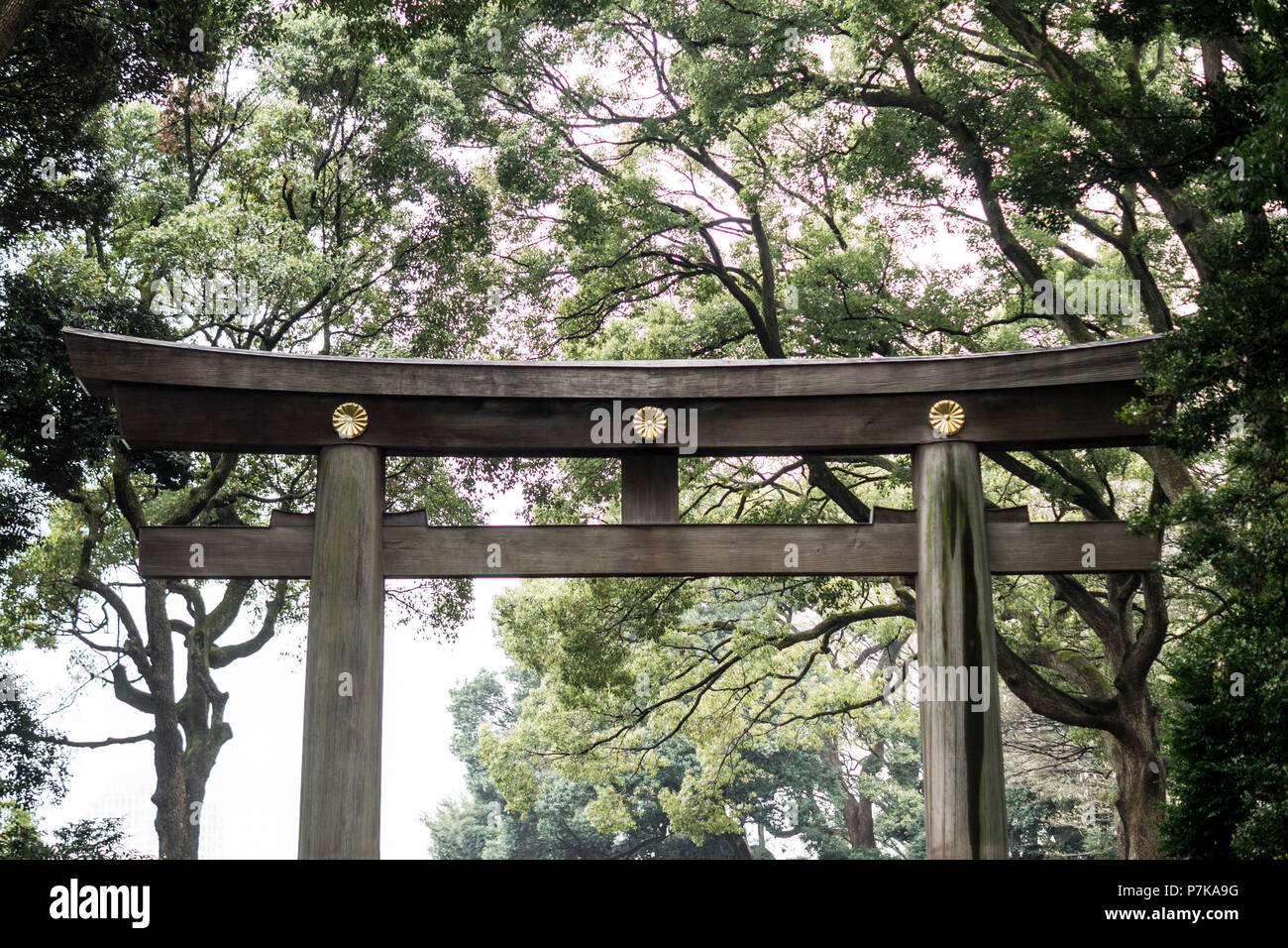 A gate to a parks entrance in Tokyo - Stock Image