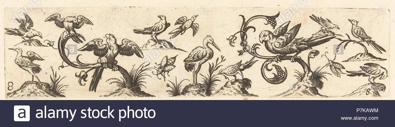 Frieze with twelve birds, Anonymous, Hans Collaert (I), 1530 - 1580. - Stock Image