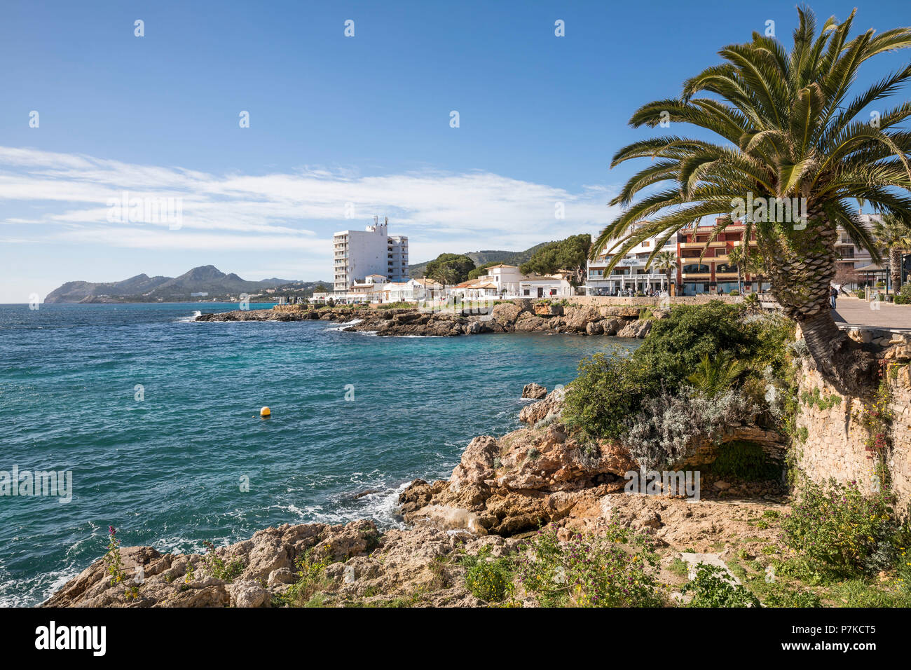 Coast in Cala Ratjada, Mallorca, Balearic Islands, Spain - Stock Image