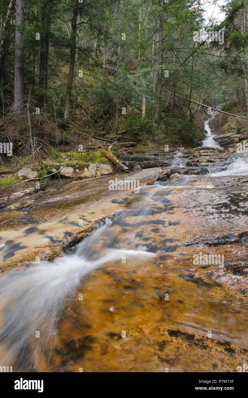 Kedron Flume in Hart's Location, New Hampshire during the spring months. This waterfall is within Crawford Notch State Park. Stock Photo