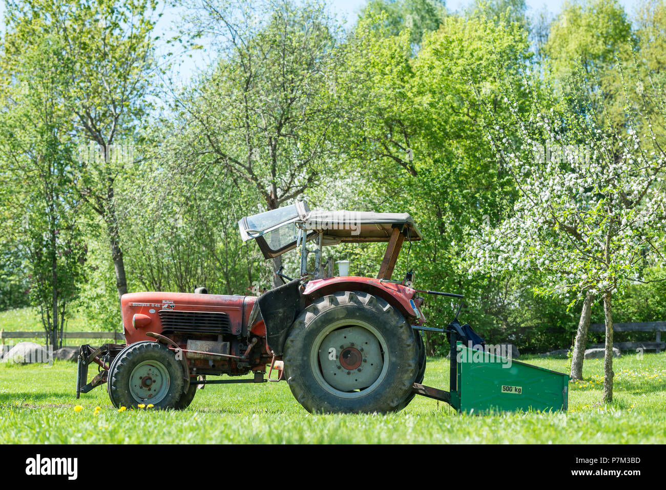 Sulzberg, Bavaria, Germany, Güldner G 45 tractor, built in 1967, engine capacity 3140 cc, 45 hp - Stock Image