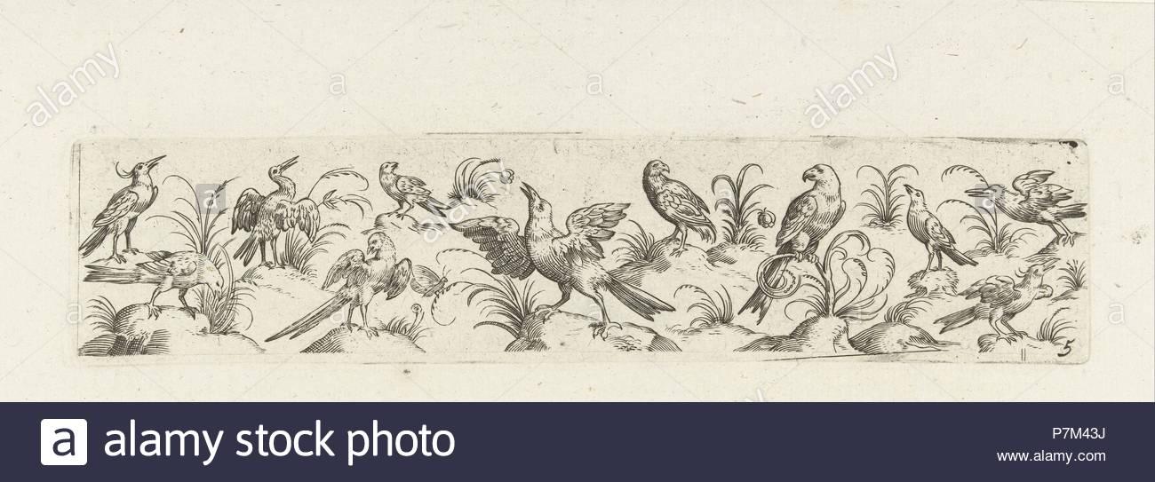 Frieze eleven birds and insect, Pieter Serwouters, Hans Collaert (I), Marcus Geeraerts, c. 1607. - Stock Image