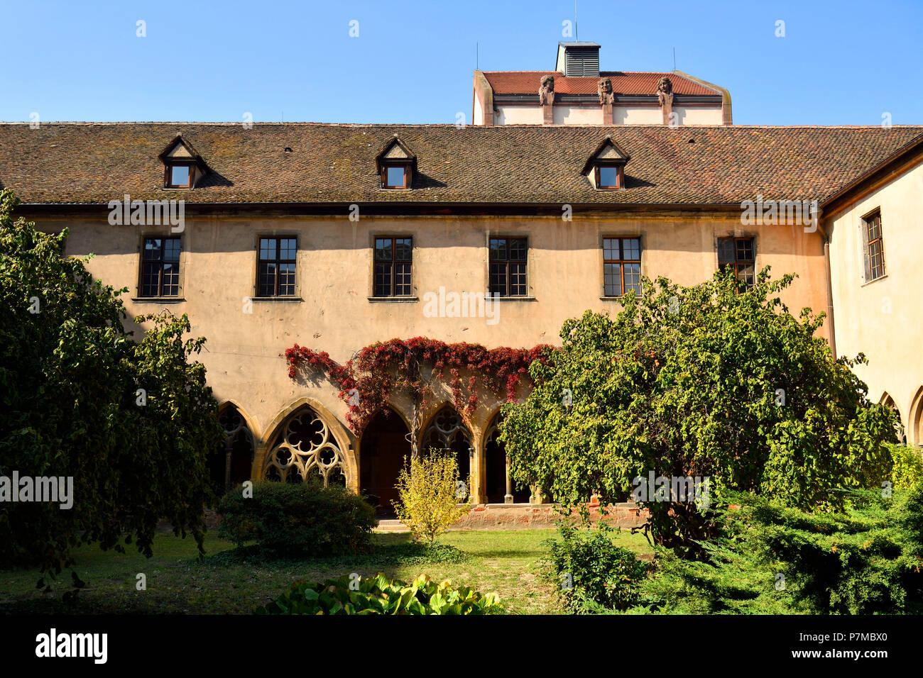 France, Haut Rhin, Alsace Wine Route, Colmar, Unterlinden Museum, the cloister Stock Photo