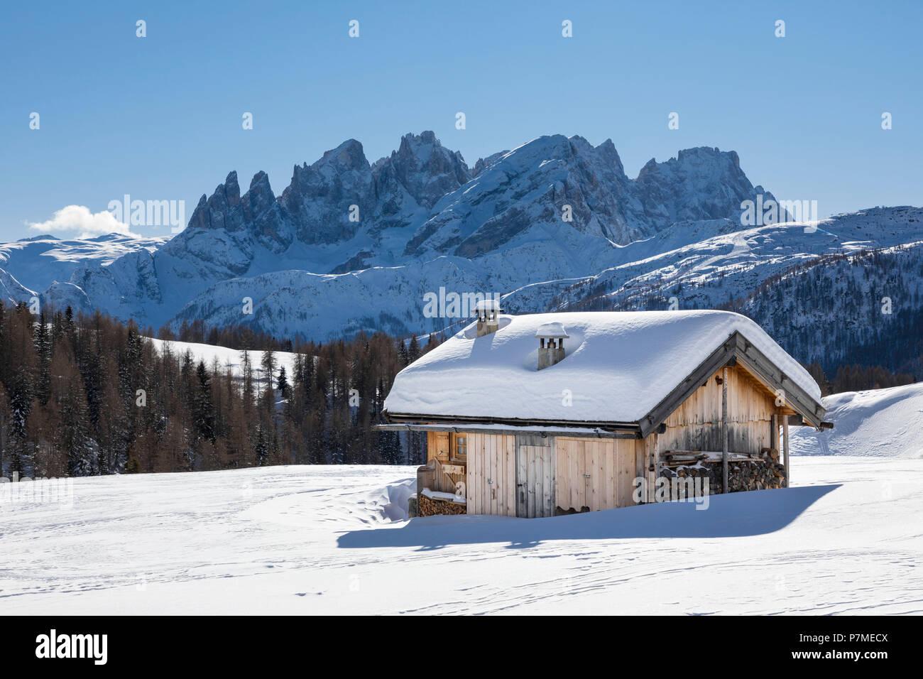 View on the Pale Group, Pale di San Martino, from the small village called Fuciade in San Pellegrino Pass, Soraga di Fassa, Biois Valley, Trento province, Trentino-Alto Adige, Italy, Europe, Stock Photo