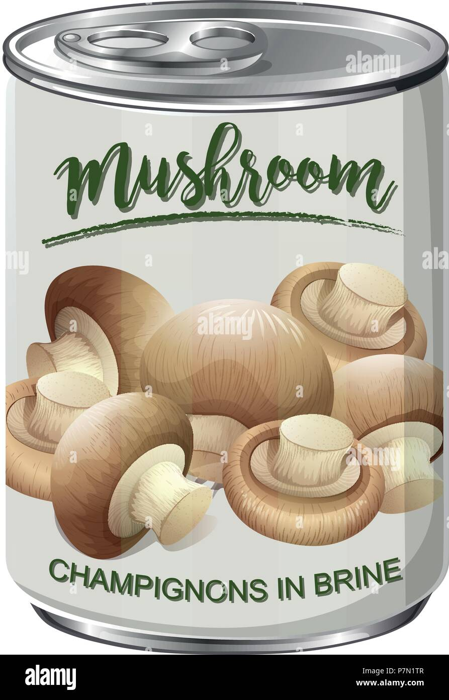 A Can of Mushroom illustration - Stock Vector