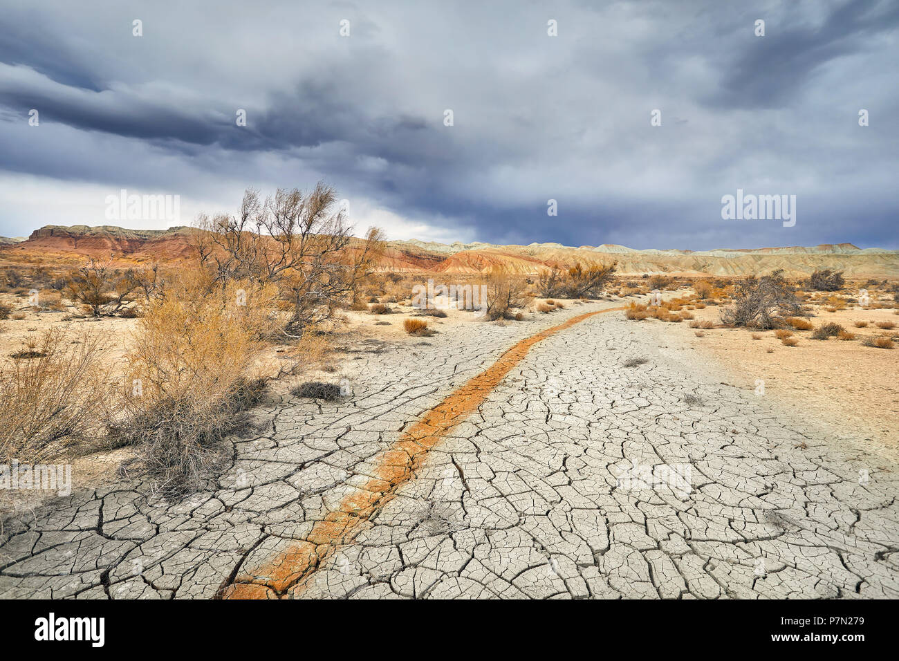 Red stripe from clay on cracked ground in national desert park Altyn Emel in Kazakhstan - Stock Image
