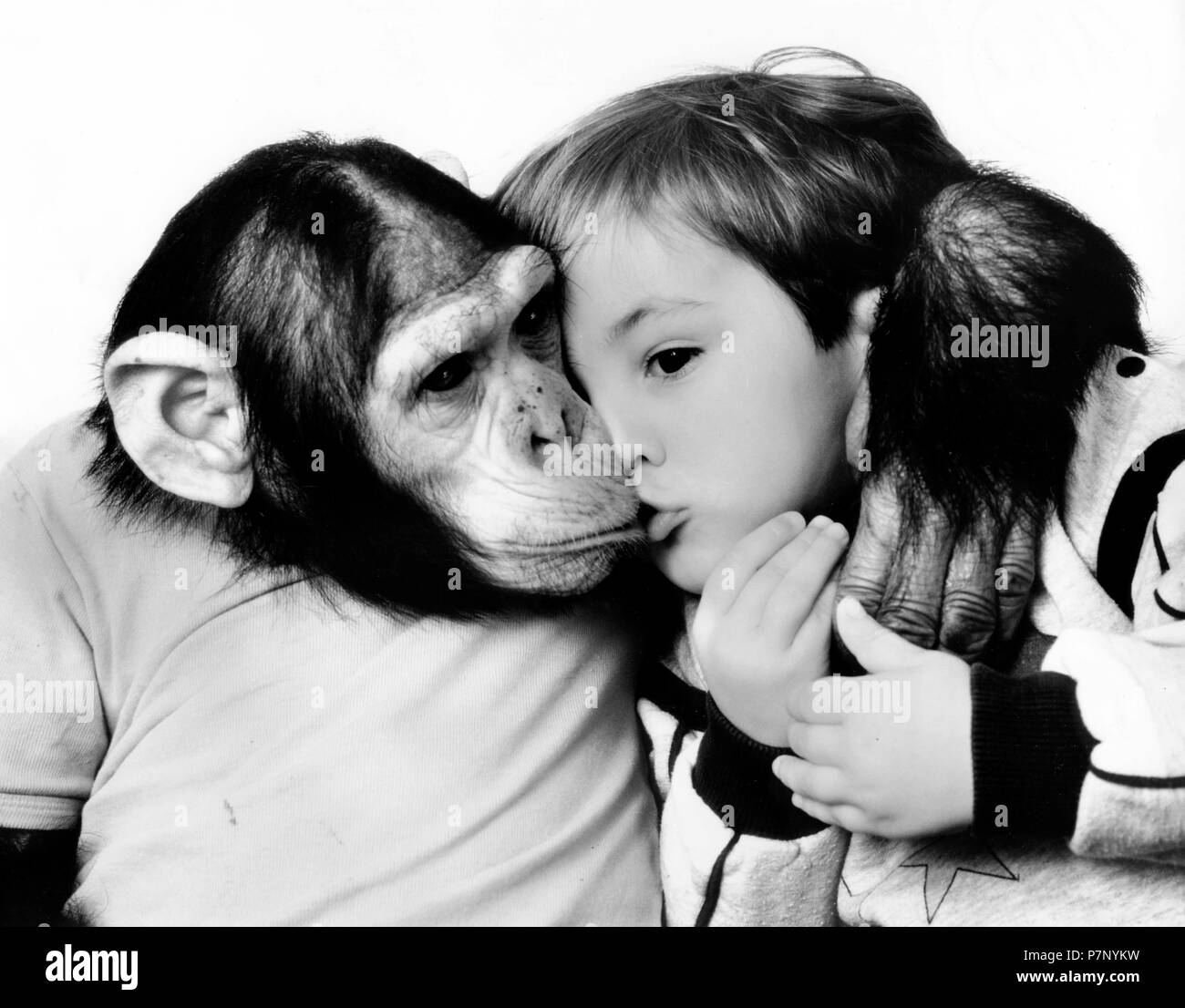 Chimpanzee kisses and hugs little boy, England, Great Britain - Stock Image