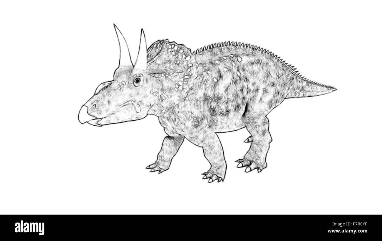 diceratops (triceratops) - Stock Image
