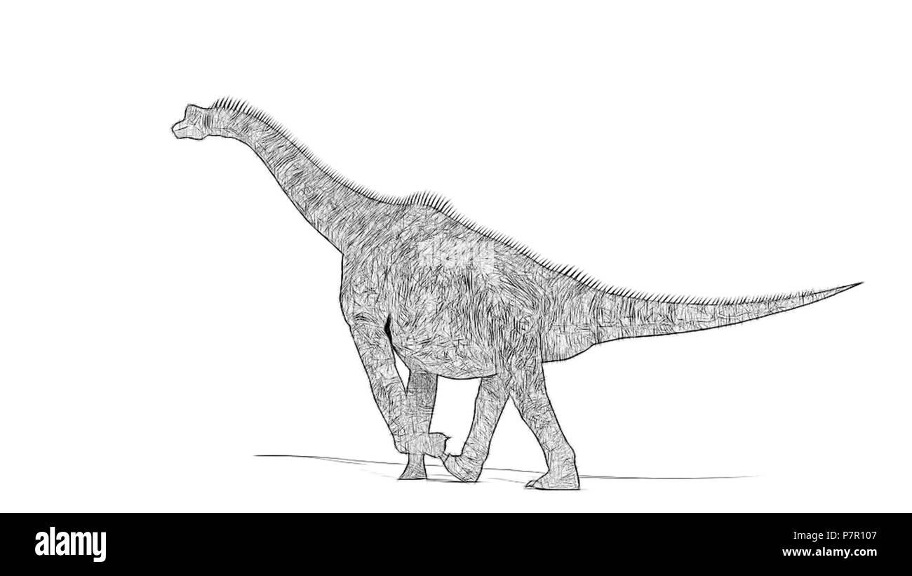 brachiosaurus - Stock Image