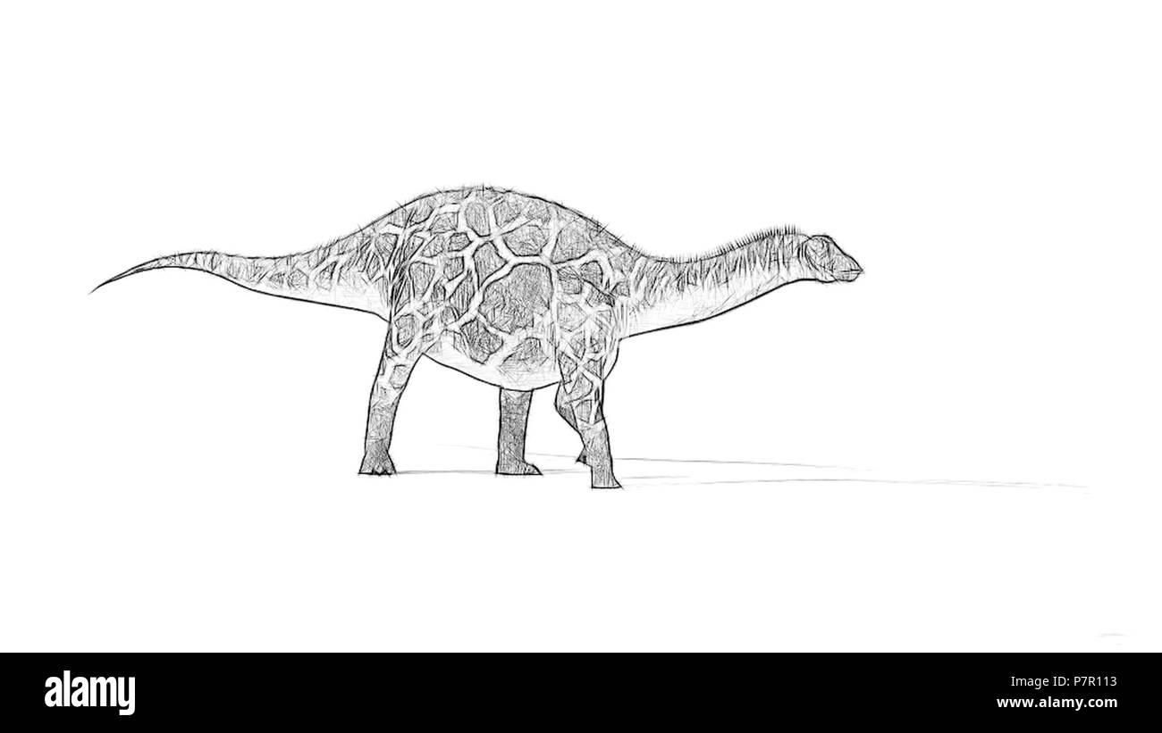 sketch of dicraeosaurus - Stock Image