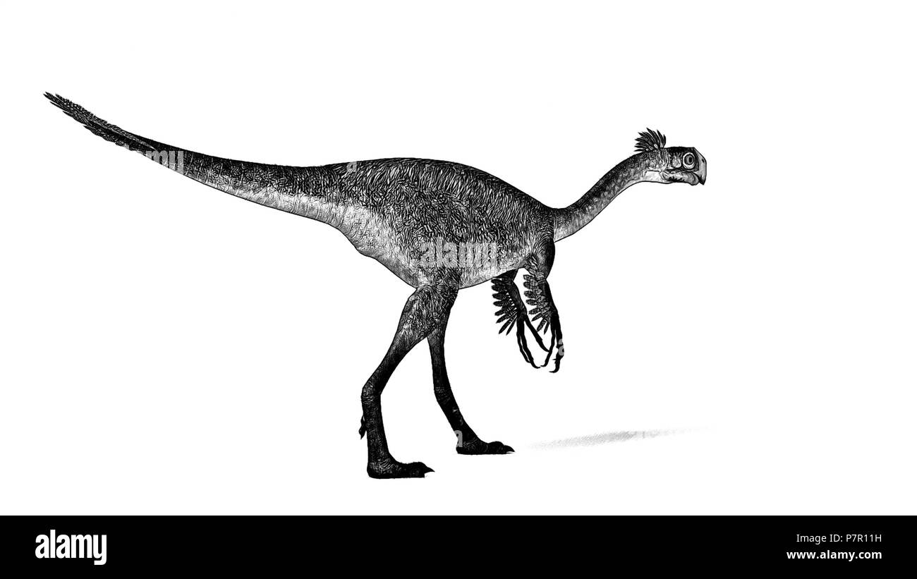 gigantoraptor - Stock Image