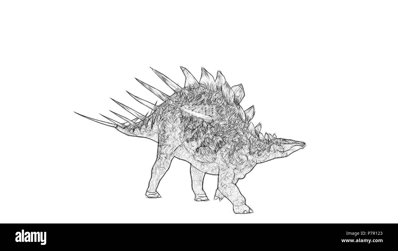 sketch of kentrosaurus - Stock Image