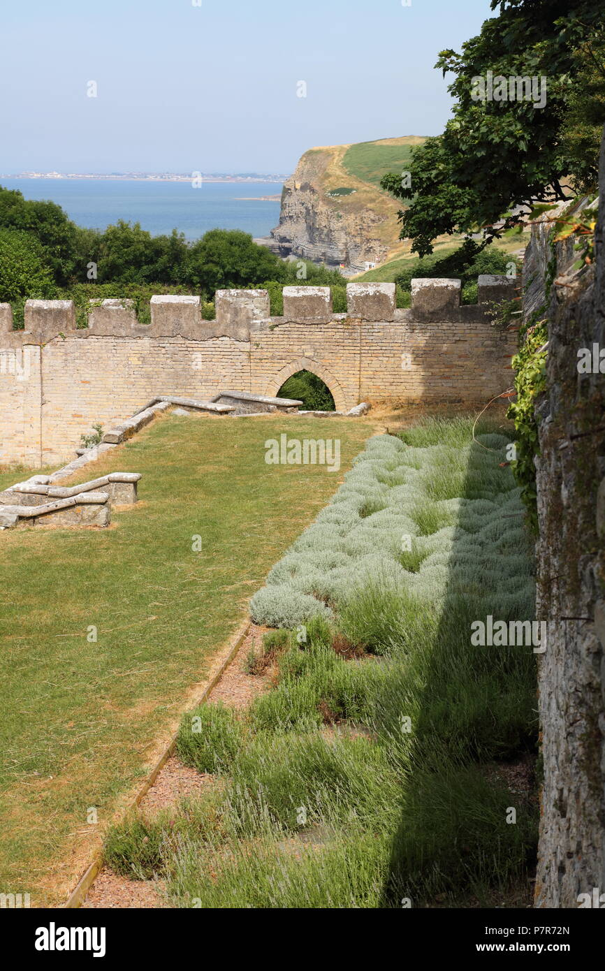 Within The Walls Of The Well Known Dunraven Walled Gardens Below The Castle  Ruins , This