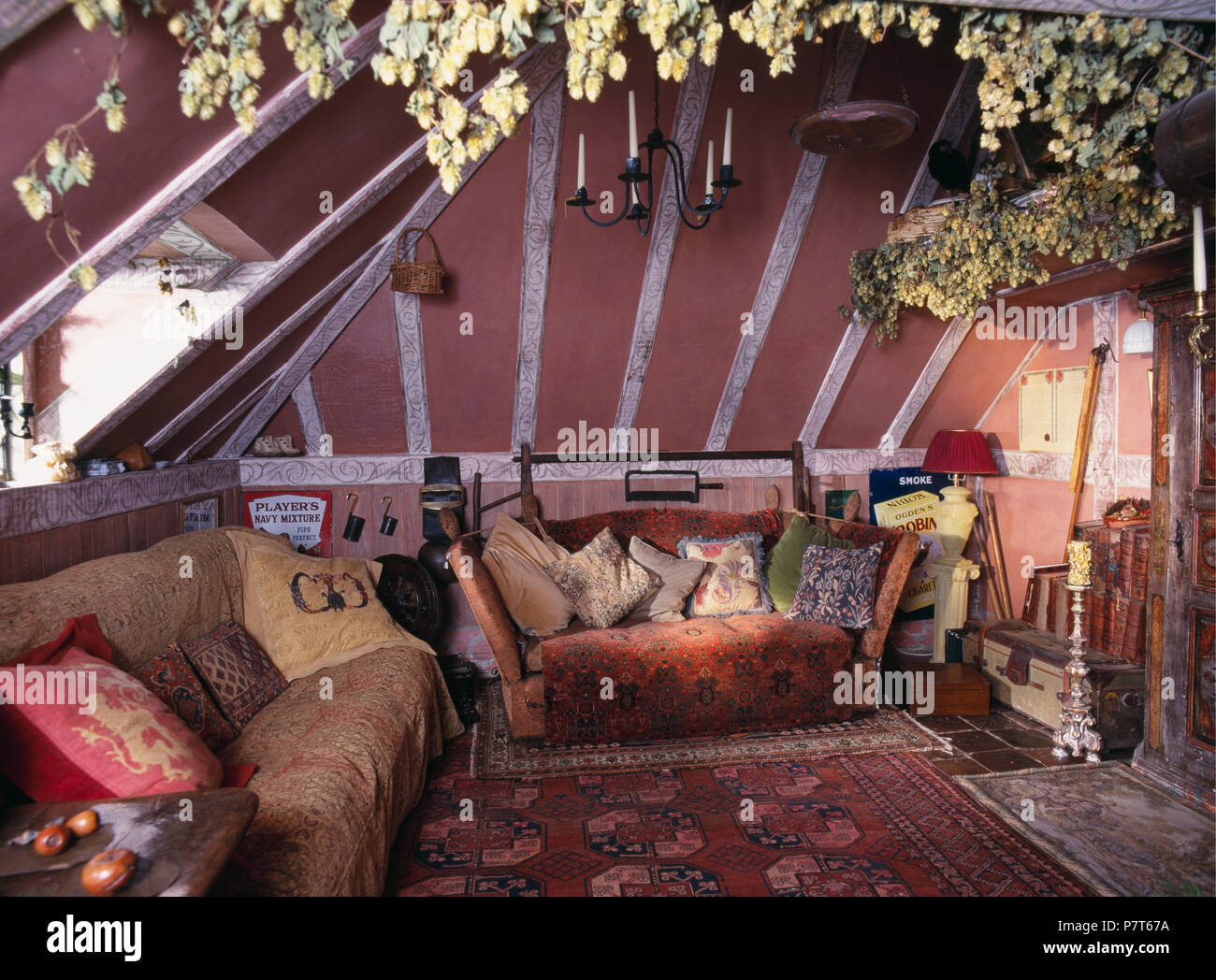 Dried hop bine on ceiling of old fashioned pink cottage living room with cushions and throws on sofas - Stock Image