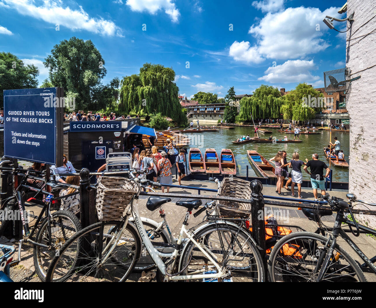 Cambridge Tourism - Scudamores Punts waiting for hire on a warm summer day - Stock Image