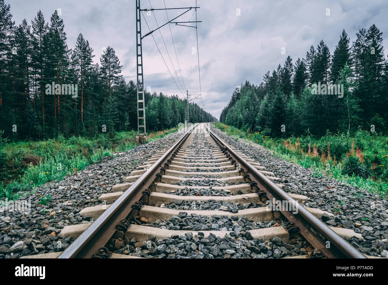 Finland, Railroad tracks whit electricity grid for the locomotives on a cloudy day - Stock Image