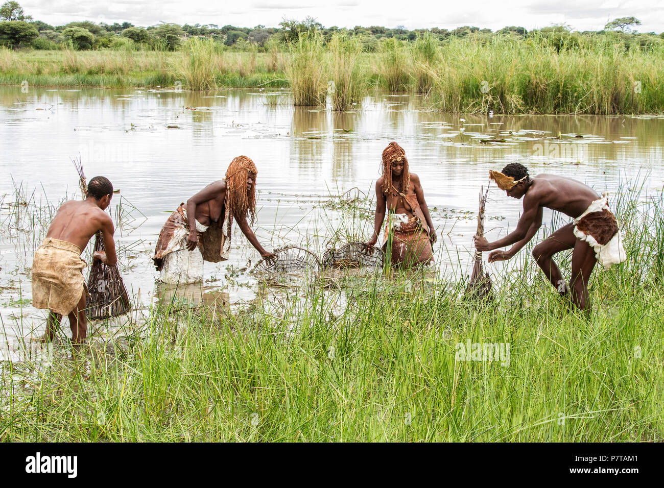 The living museum of the Mbunza on the Kavango river near Rundu have recreated a sustainable, authentic, pre-colonial village. Fish being caught - Stock Image