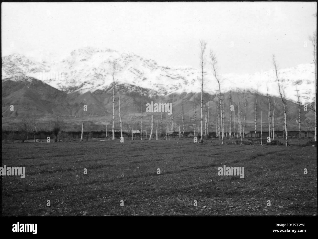 Persien: Landschaft (Lokalisierung unsicher); Im Vordergrund eine Ebene mit Bäumen, im Hintergrund schneebedeckte Berge. from 1933 until 1934 78 CH-NB - Persien- Landschaft (Lokalisierung unsicher) - Annemarie Schwarzenbach - SLA-Schwarzenbach-A-5-04-206 - Stock Image