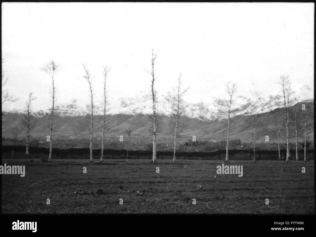 Persien: Landschaft (Lokalisierung unsicher); Im Vordergrund eine Ebene mit Bäumen, im Hintergrund schneebedeckte Berge. from 1933 until 1934 78 CH-NB - Persien- Landschaft (Lokalisierung unsicher) - Annemarie Schwarzenbach - SLA-Schwarzenbach-A-5-04-207 - Stock Image