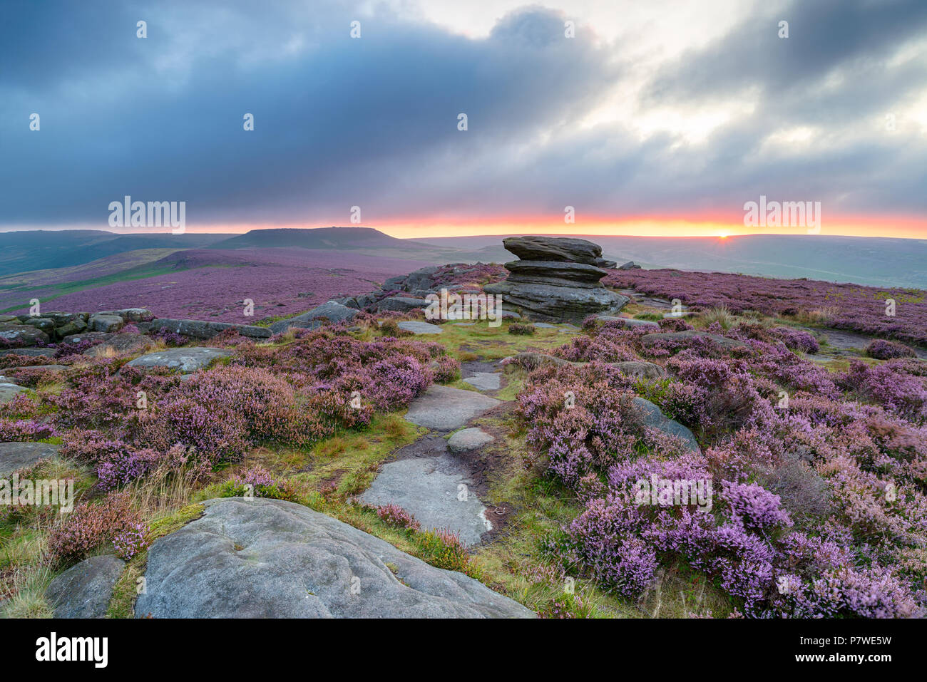 Moody summer sunrise over heather at Over Owler Tor in the Derbyshire Peak District, with the hillfort Carl Wark in the distance - Stock Image