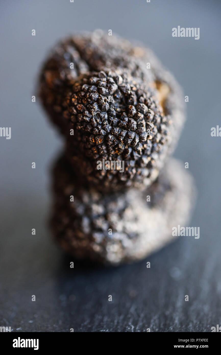 Fresh Black Summer Truffles, the diamond of the kitchen. - Stock Image