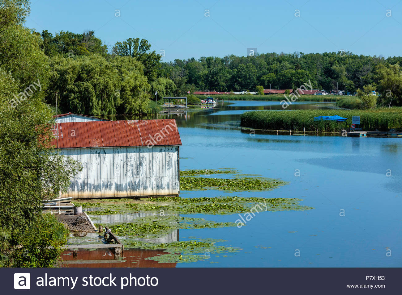 Boathouses on river in polder reclaimed marsh near Lake Simcoe and Bradford Ontario Canada Holland Marsh East Holland River - Stock Image