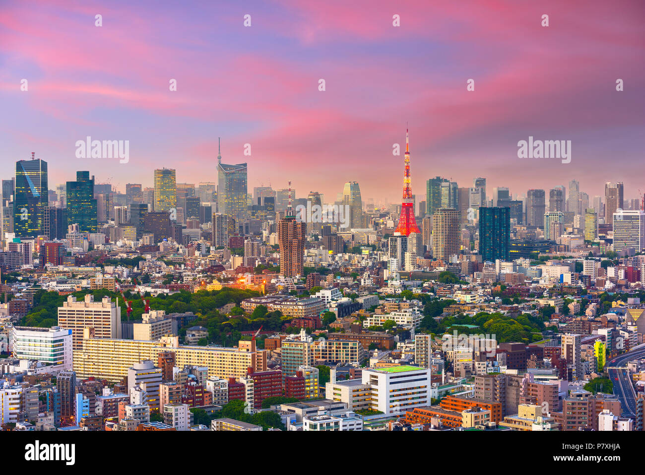 Tokyo, Japan cityscape and tower at dusk from the Ebisu district. - Stock Image